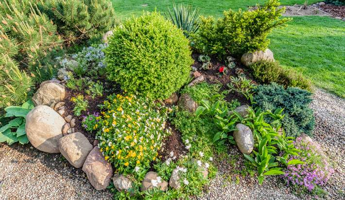 Are You Ready to Rock Your Garden Design?