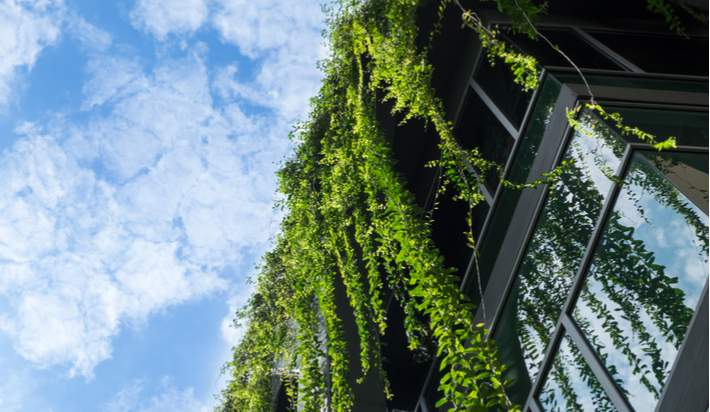 Using a Green Roof to Blend Into Nature