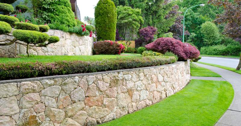 Landscaping for Allure and Privacy